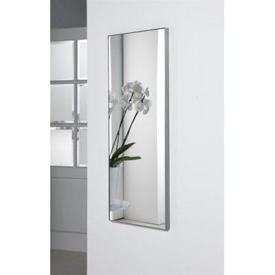Spiegel geborsteld staal (40x100cm)