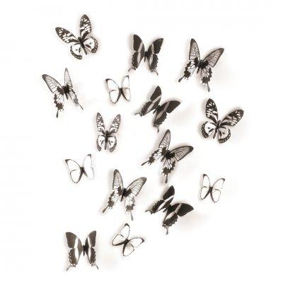 Wanddeco chrysalis zwart/helder
