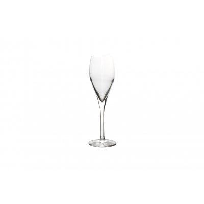Champagneglas set van 12