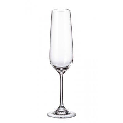 Champagneglas (set van 6)
