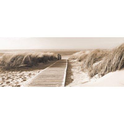Glaskader duinen (50x125)
