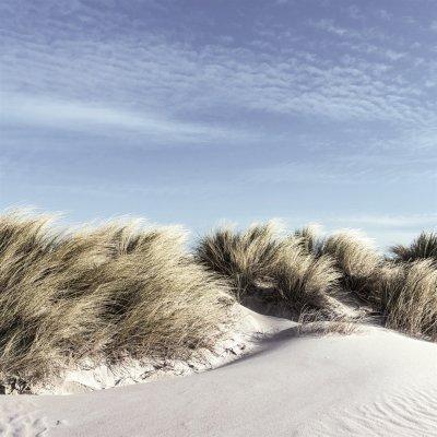 Glaskader duinen aan zee (20x20)