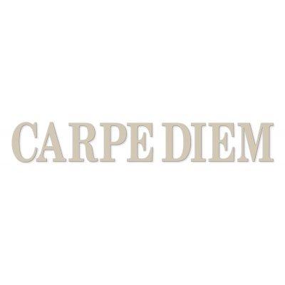 Letters carpe diem (25x120)