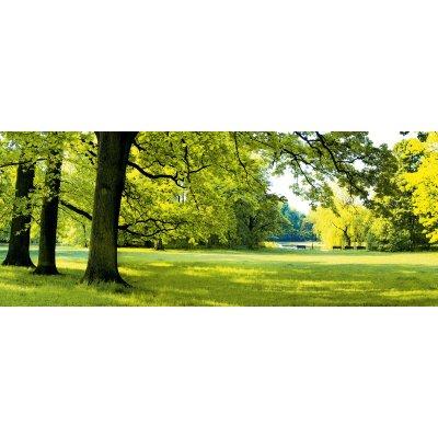 Glaskader groen park (50x125)