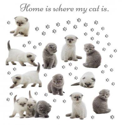 Deko sticker: katten