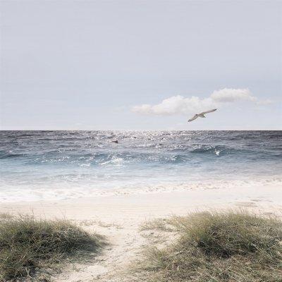 Glaskader zee (20x20)