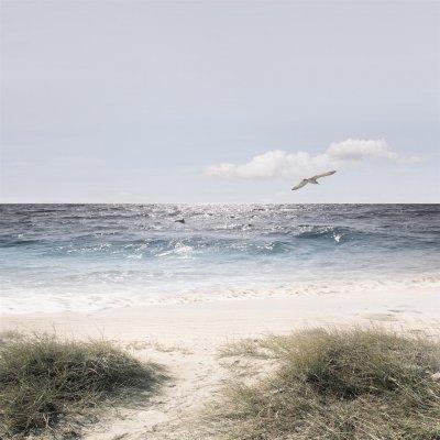 Glaskader zeezicht (50x50)