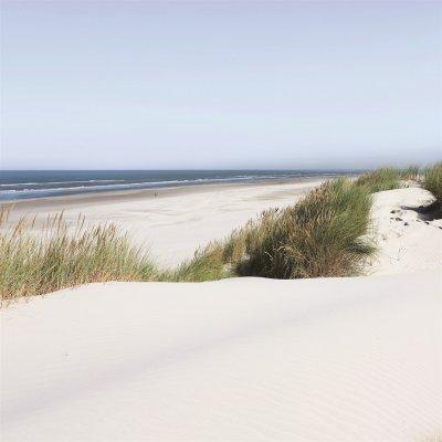 Glaskader strand (30x30)