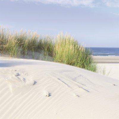 Glaskader duinen (30x30)