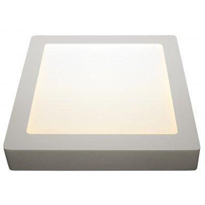 Fluke vierkant plafondlamp  wit incl 12w led