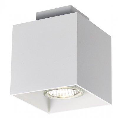 Plafondlamp wit dimbaar led