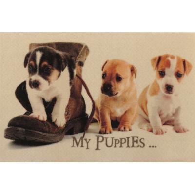 Voetmat my puppies (50x80cm)