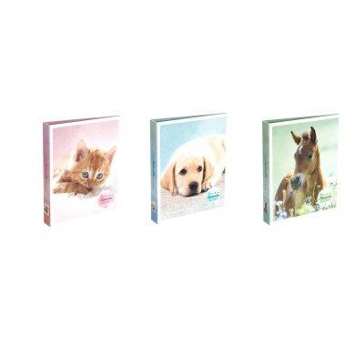 Ringmap kat/hond/paard