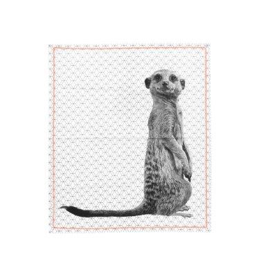 Keukenhanddoek meerkat